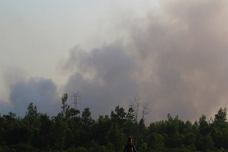 Tackling forest fires in 5 Indonesian provinces