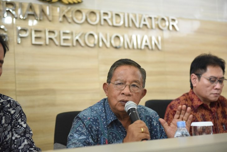 Garlic imports await permit issuance from Trade Ministry: Darmin