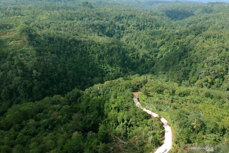 Menteri LHK terbitkan IPPKH 422 hektare bangun bendungan Way Apu