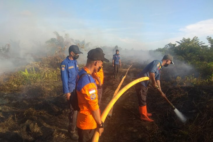 Aceh's six-hectare palm oil plantation area ravaged by fire