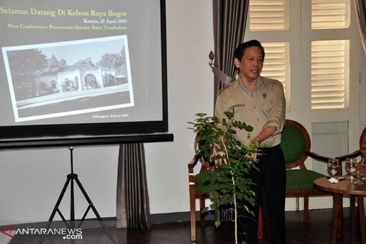 Kebun raya Bogor pamerkan puluhan jenis baru tumbuhan
