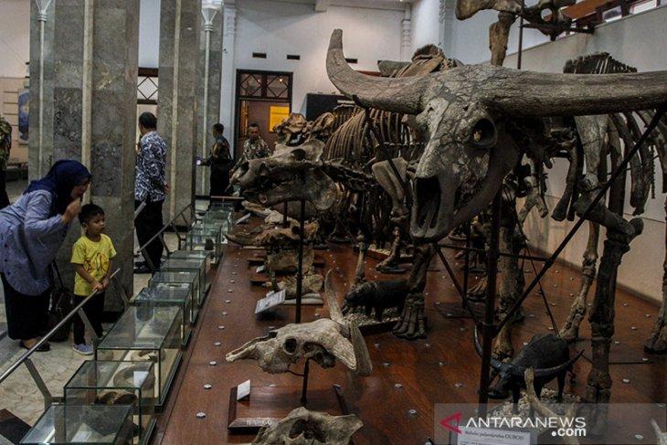 Hari bumi di museum Geologi