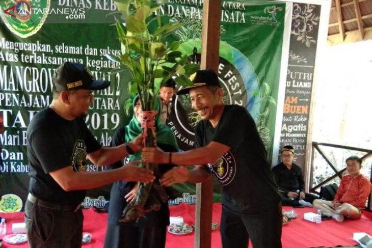 Festival Mangrove Penajam ditandai penanaman bibit bakau