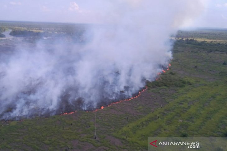 Mily joins efforts to halt forest fires in South Sumatra