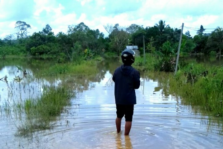 Flooding inundates three villages in Tanjung Palas Timur, E Kalimantan