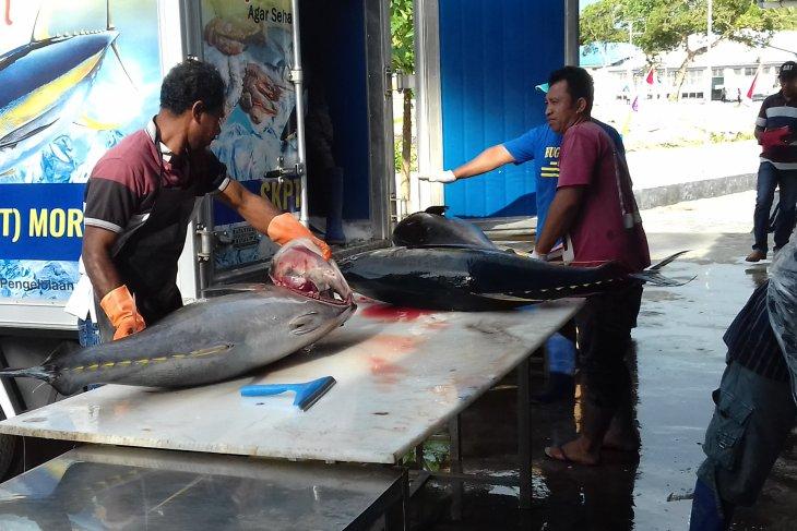 DKP Malut - Pemkab Pulau Morotai kelola KKP Rao - Tanjung Dehegila
