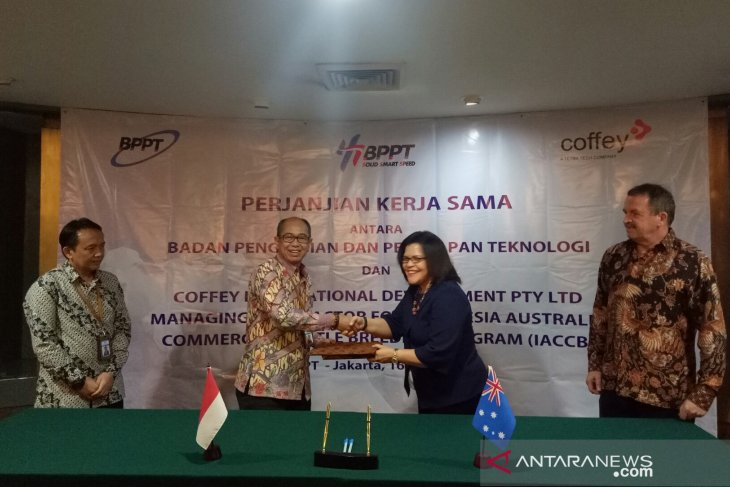 Indonesia's BPPT cooperates with Australian firm for cattle breeding