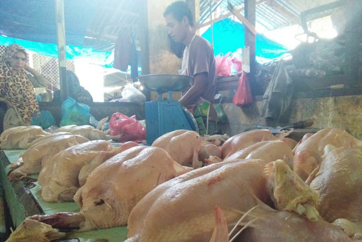 Jelang Idul Fitri harga ayam potong naik di Lhokseumawe