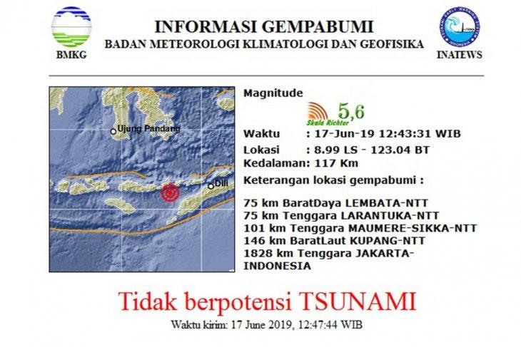 Gempa 5,6 SR guncang Lembata, NTT