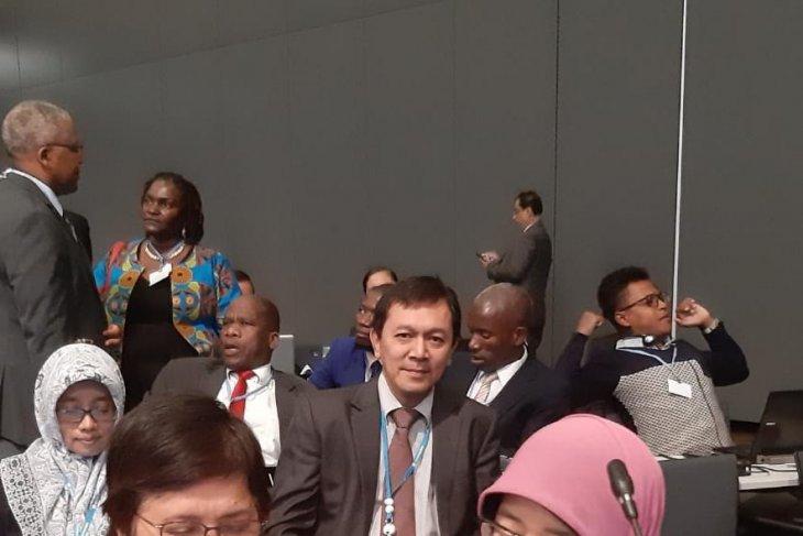 Indonesia usung blue carbon di UNFCCC