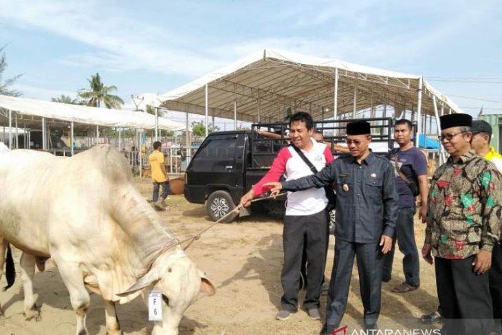 Wabup Abdya sambut peserta Expo Ternak dari 23 kabupaten/kota