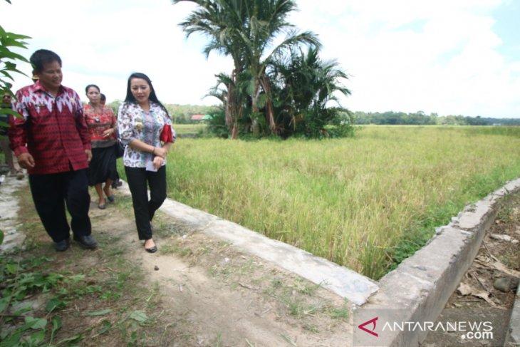 Dirjen PSP Kementan dorong Pemkab Landak asuransi pertanian