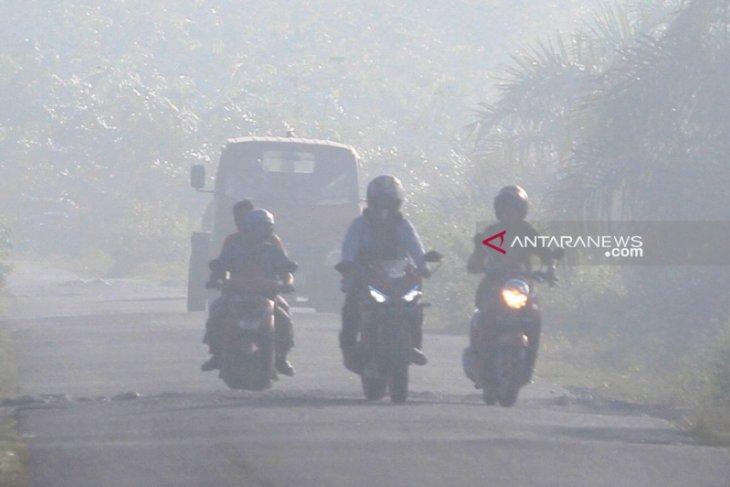 BPBA: 255 hektar hutan dan lahan di Aceh terbakar