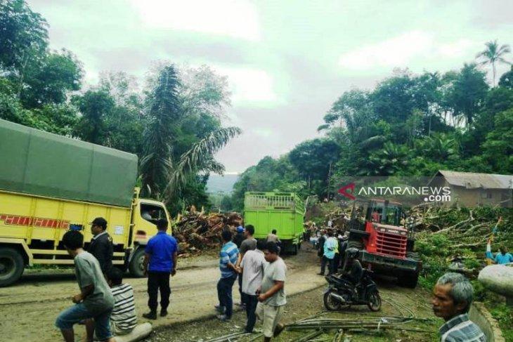 BPBD: Kemacetan panjang kendaraan akibat pohon tumbang terurai