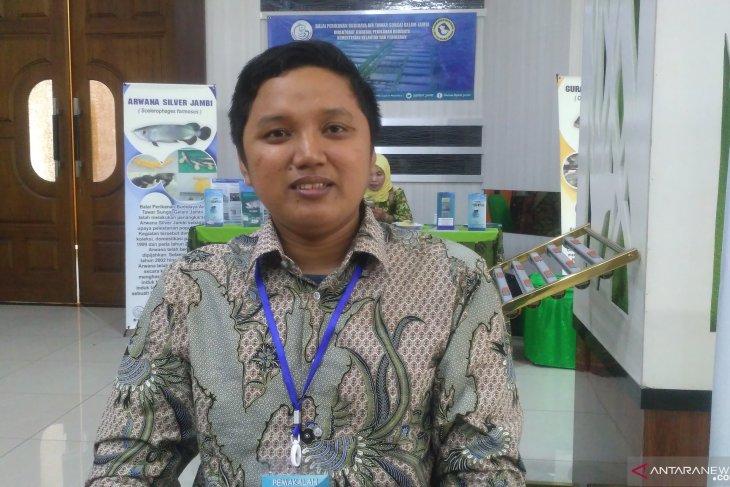 Sejumlah spesies ikan endemik Indonesia terancam punah