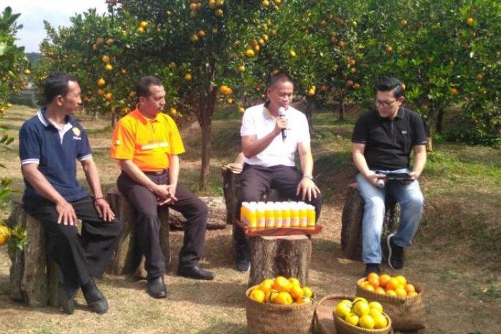 Kementan dorong petani jeruk terapkan teknologi panen sepanjang tahun