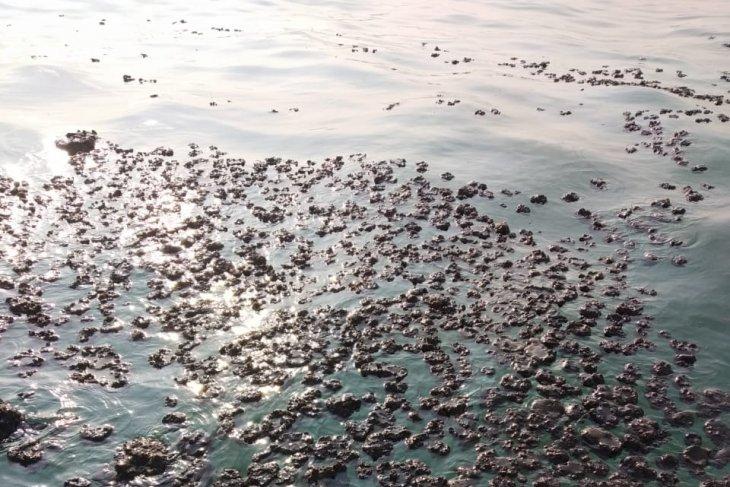Warga ramai-ramai bersihkan tumpahan minyak mentah di bibir pantai