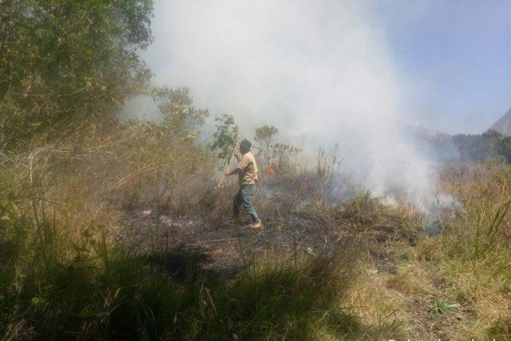 Kebakaran padang rumput Gunung Rinjani Lombok terjadi lagi