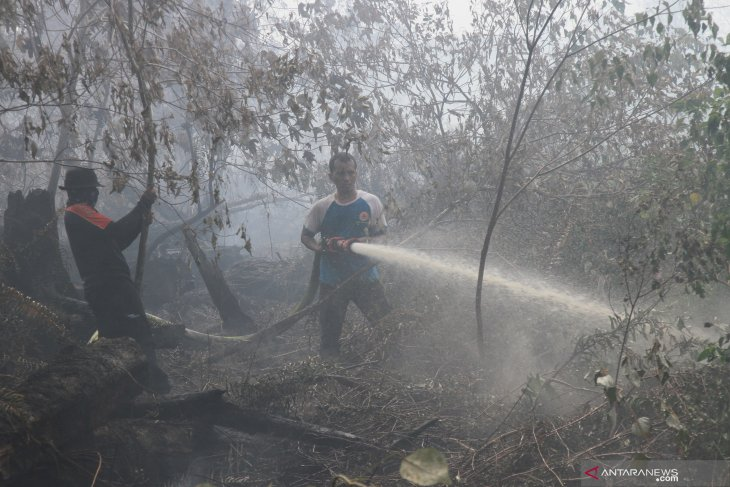 Satellites detect 138 hotspots of forest fires in Riau