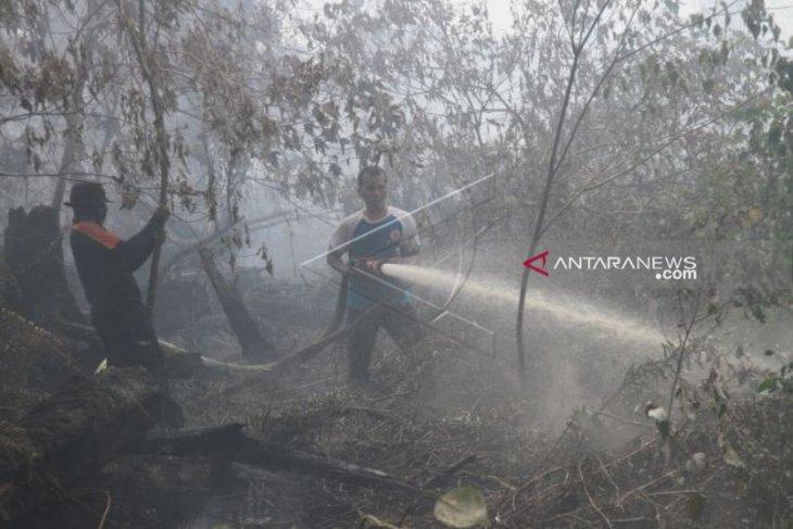Kebakaran lahan di Aceh Barat  meluas capai 33 hektare