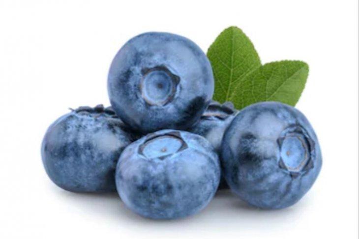Konsumsi blueberry agar awet muda