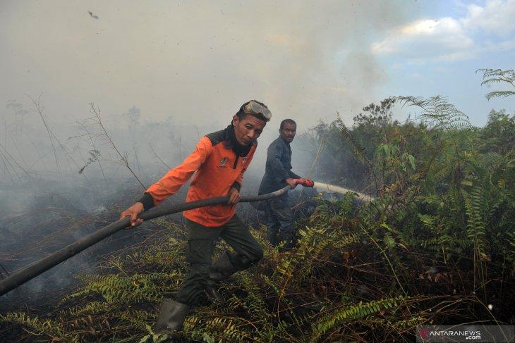 ASEAN should move faster for mitigation of peatland fires, haze
