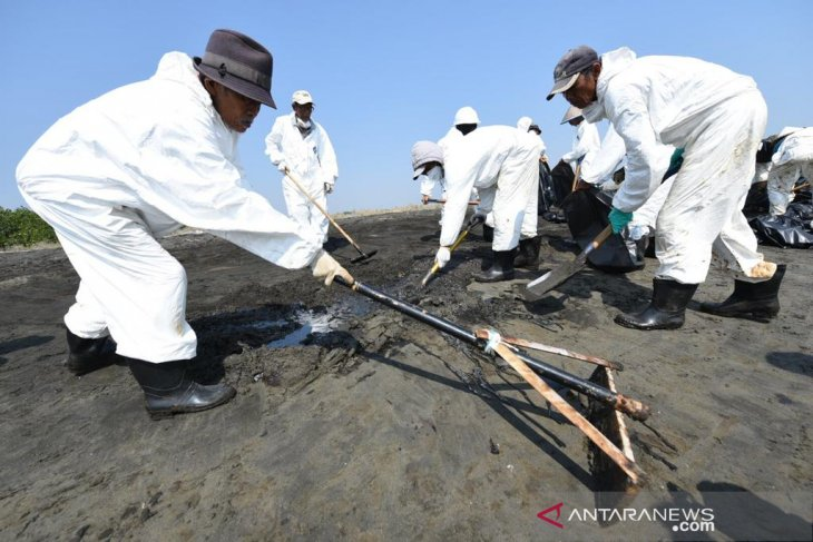 1.500 personel diturunkan untuk bersihkan tumpahan minyak di pantai Karawang