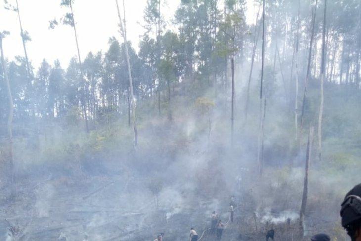 BMKG: 16 titik panas muncul di Aceh