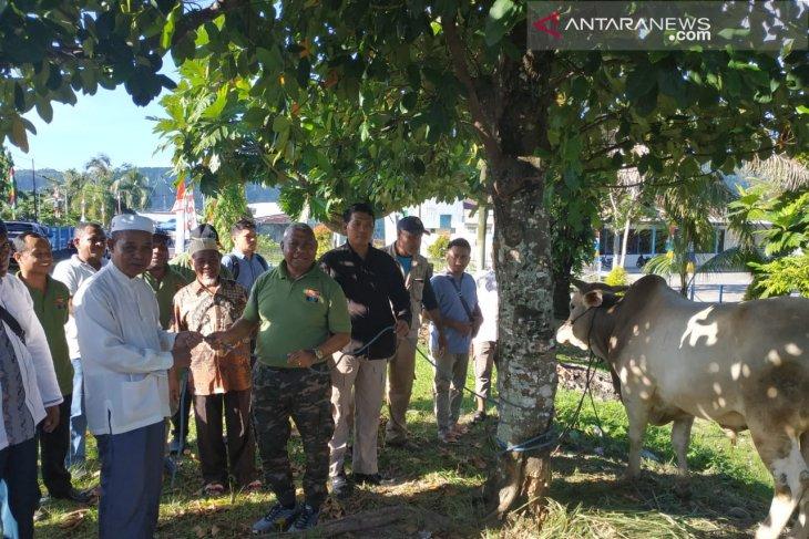 Gubernur Dominggus Mandacan serahkan 63 hewan kurban