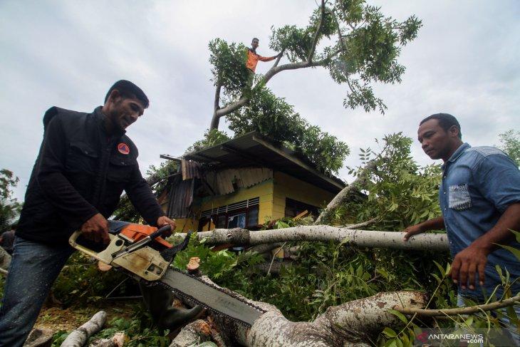 33 rumah rusak disapu angin puting beliung di Aceh Timur