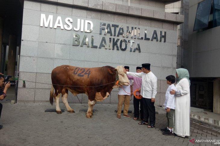Anies sumbang seekor sapi kurban limosin untuk Pemprov DKI Jakarta