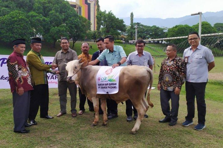 Semen Indonesia salurkan 233 hewan kurban