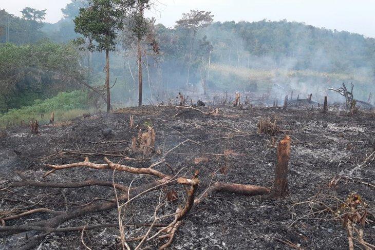 Polres Bengkayang tangkap dua warga yang membakar lahan