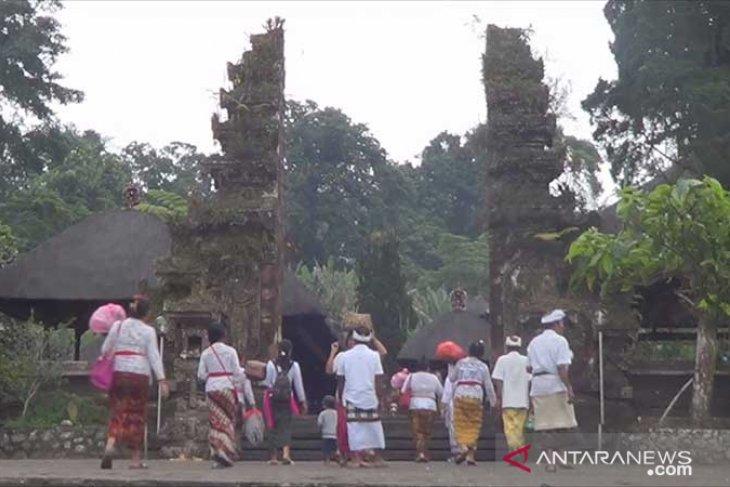 BPBD Tabanan: sudah padam, kebakaran di  puncak Gunung Batukaru (video)
