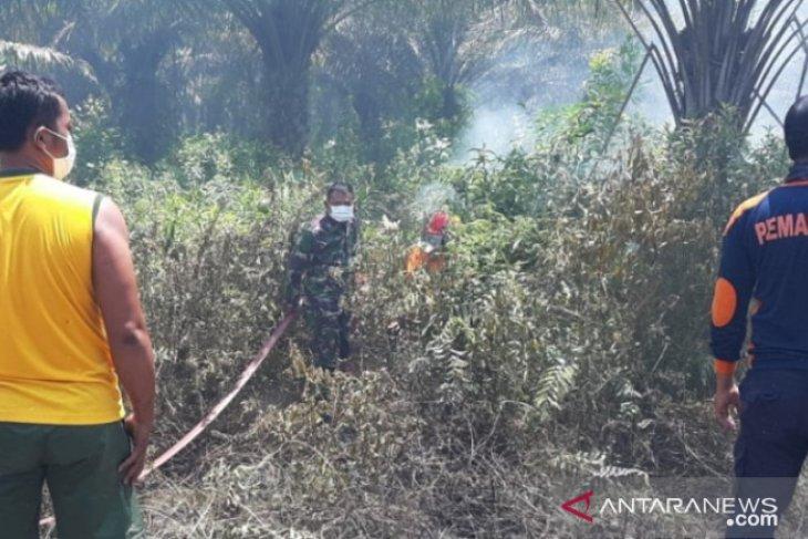 Korem 045 - Polsek Namang berhasil padamkan kebakaran hutan