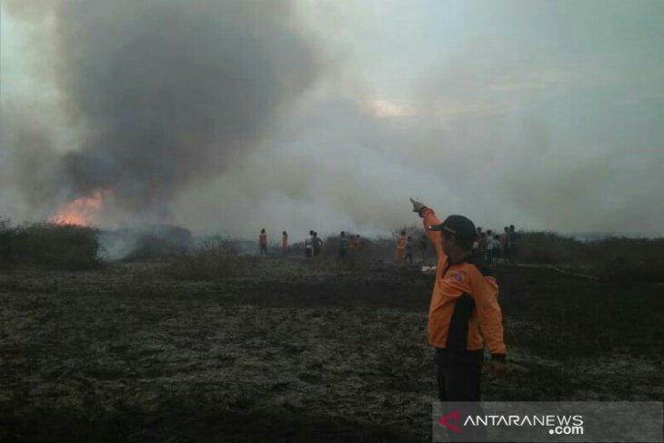 Kebakaran lahan di Tapus dan Paminggir