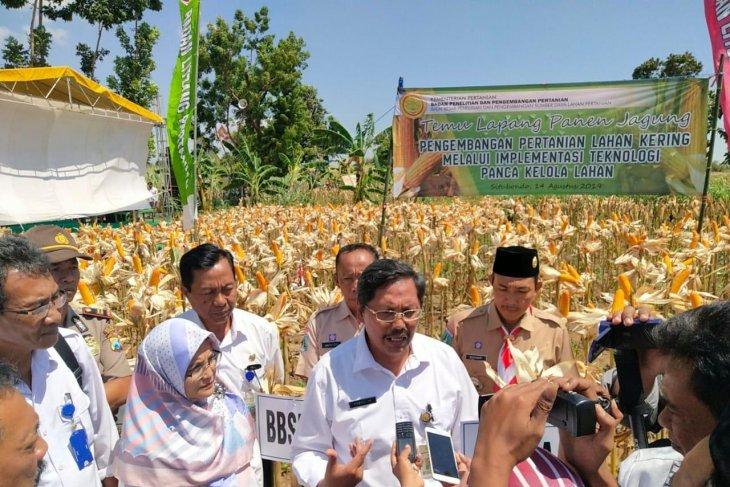 BPTP Jatim gencarkan sosialisasi pencegahan serangan hama tanaman