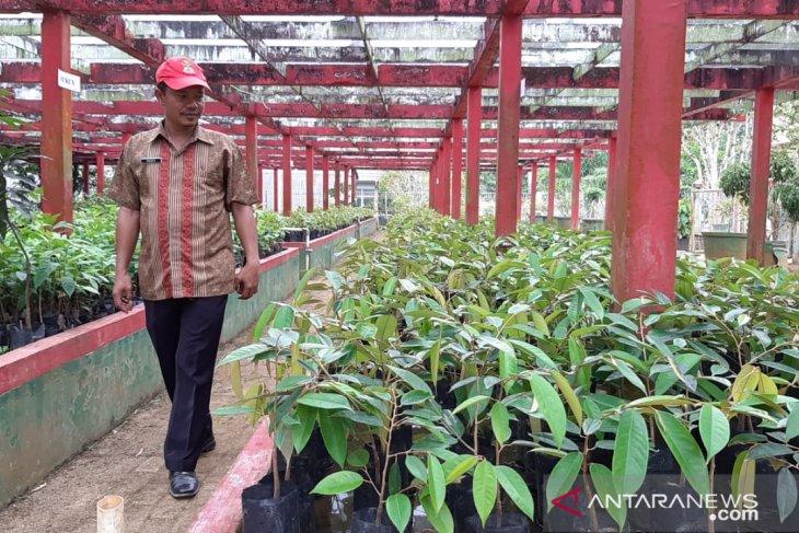 BBIH Distan TPH Kalbar kembangkan wisata Agroteknopark