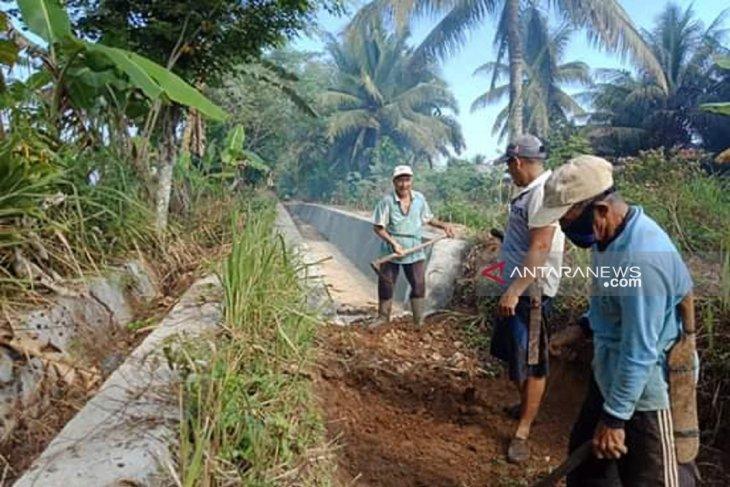 Petani Mukomuko terancam batal terima benih padi