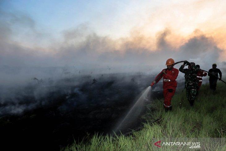 Luas area yang terbakar di Sumatera Selatan capai 1.822 hektare