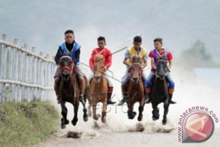 Disparpora:  330 ekor kuda bakal ikuti pacuan tradisional di Takengon