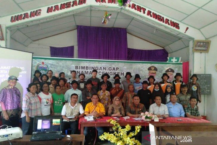 Polbangtan Medan ikut bimbingan GAP tanaman cengkeh di Samosir