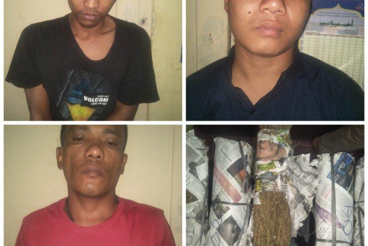 Polisi Tanjungpura tangkap tiga tersangka pemilik daun ganja