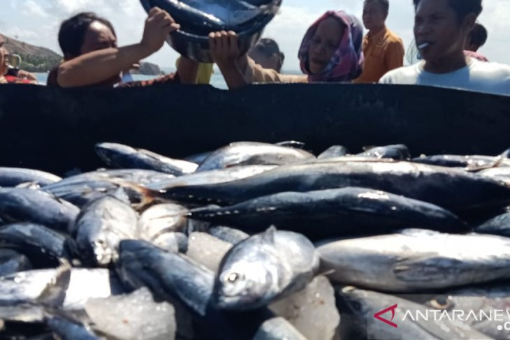 Fisheries business actors should capitalize on US-China trade war