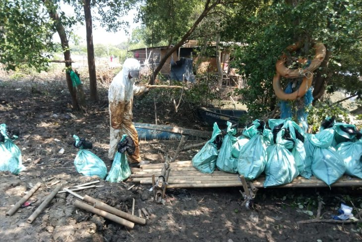 2.200 petambak dan nelayan Bekasi terdampak tumpahan minyak
