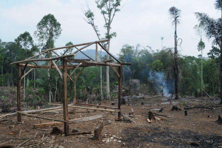 Petani Badui mulai garap ladang huma, Oktober penanaman