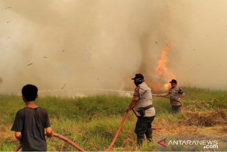 Empat pelaku pembakaran lahan jadi tersangka
