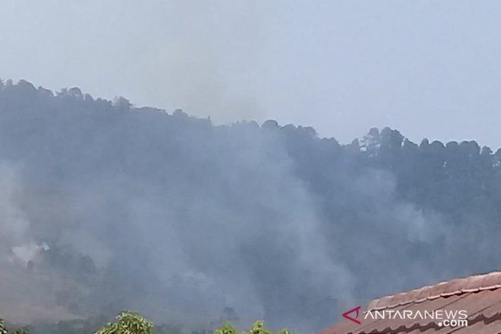 Kebakaran hutan dan lahan Gunung Walat Sukabumi meluas