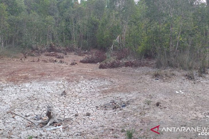 Warga Belitung manfaatkan air bekas galian tambang untuk MCK