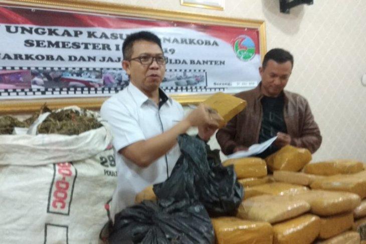 Lima  bandar narkoba di Banten dibekuk polisi, 82 kg ganja diamankan